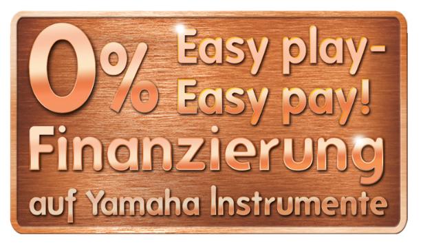 Jetzt ist der richtige Zeitpunkt, sich Ihren Instrumentenwunsch zu erfüllen.